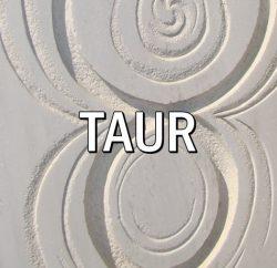 Zodia TAURULUI * Acvaria.com