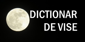 DICTIONAR DE VISE