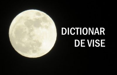 DICTIONAR DE VISE ACVARIA
