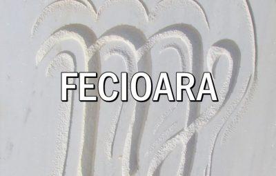 Zodia Fecioarei Acvaria.com