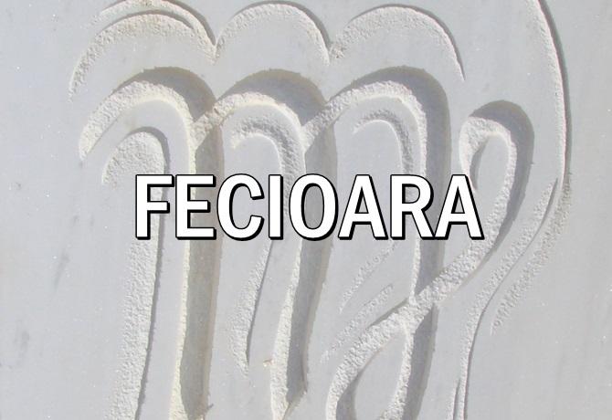 Zodia Fecioarei