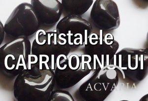 Cristalele zodiei CAPRICORN
