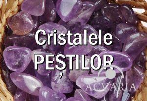 Cristalele zodiei PESTI