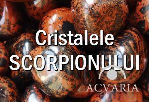 Cristalele zodiei SCORPION