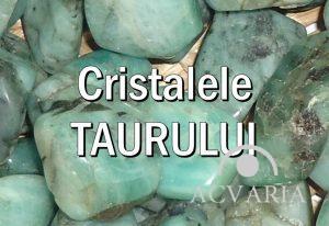 Cristalele zodiei Taur