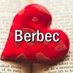 Cum iubeste BERBECUL?