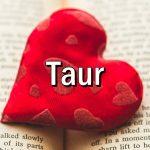 Cum iubeste TAURUL?