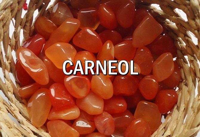 CARNEOL