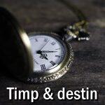 TIMP & DESTIN @acvaria.com