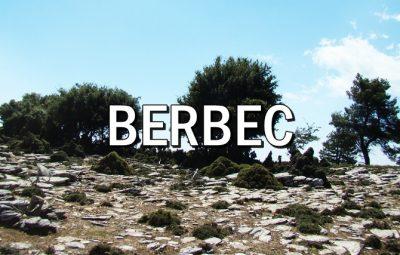 Horoscopul lunii AUGUST BERBEC