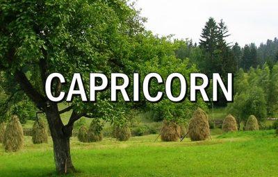 Horoscopul lunii AUGUST CAPRICORN