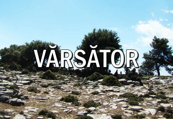 Inapoi la HOROSCOPUL LUNII OCTOMBRIE VARSATOR