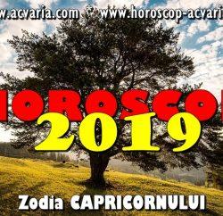 Horoscop 2019 zodia Capricornului