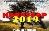 Horoscop 2019 zodia Gemeni