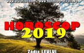 Horoscop 2019 zodia Leului