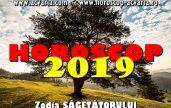 Horoscop 2019 zodia Sagetatorului