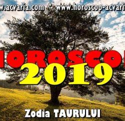 Horoscop 2019 zodia Taurului