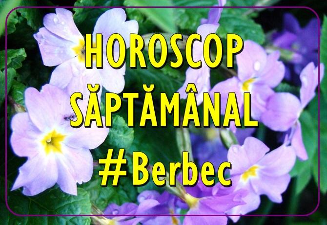 Horoscopul saptamanii BERBEC