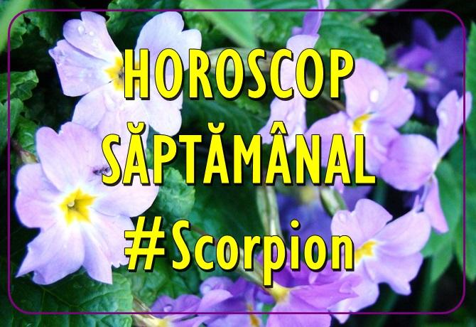 Horoscopul saptamanii SCORPION