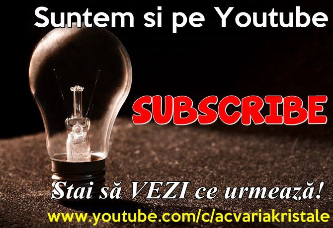 VIDEO ACVARIA PE YOUTUBE