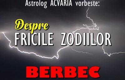 FRICILE BERBECULUI
