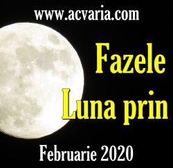 Fazele Lunii in februarie 2020