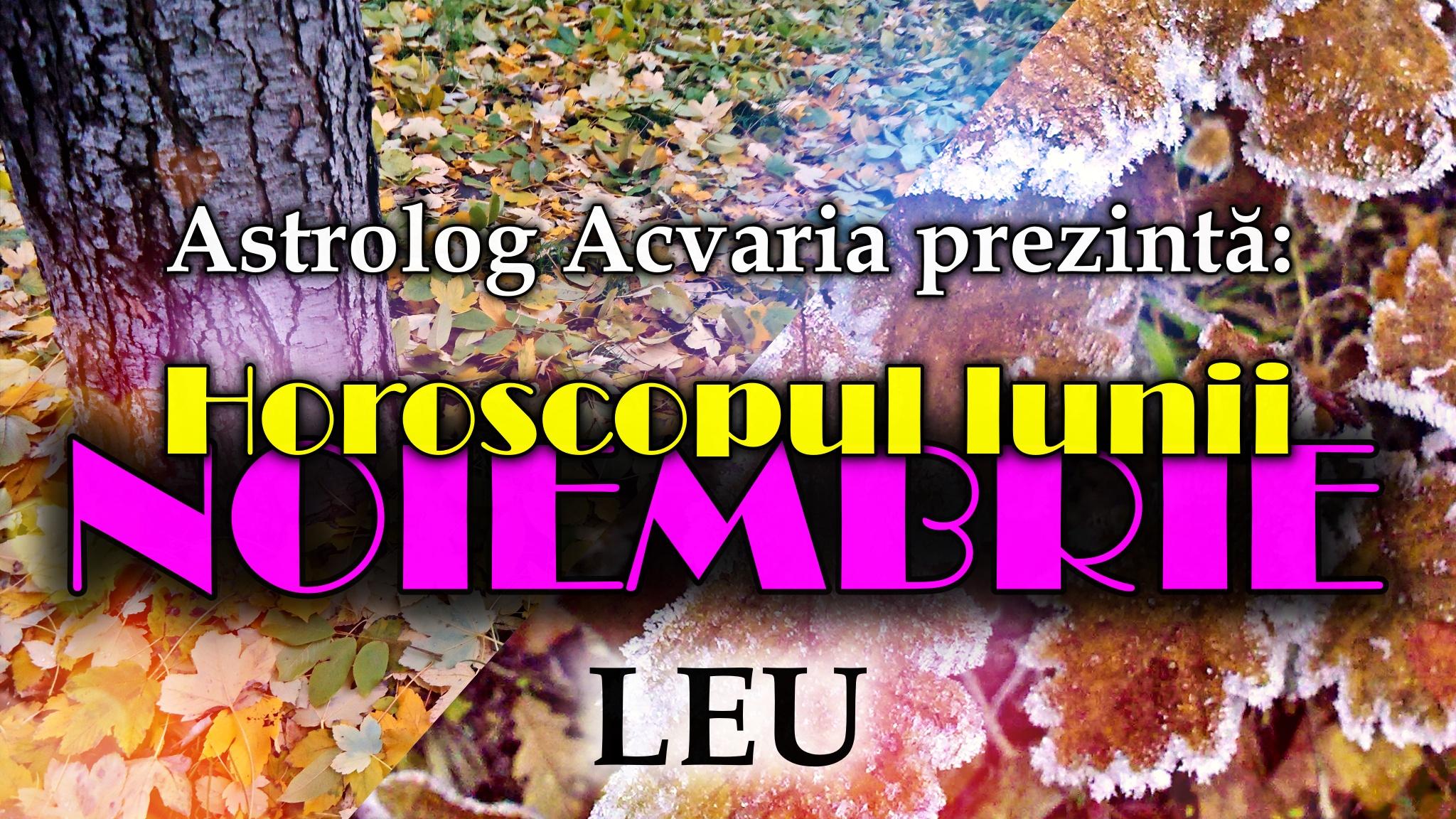 Horoscopul lunii NOIEMBRIE * Zodia LEULUI