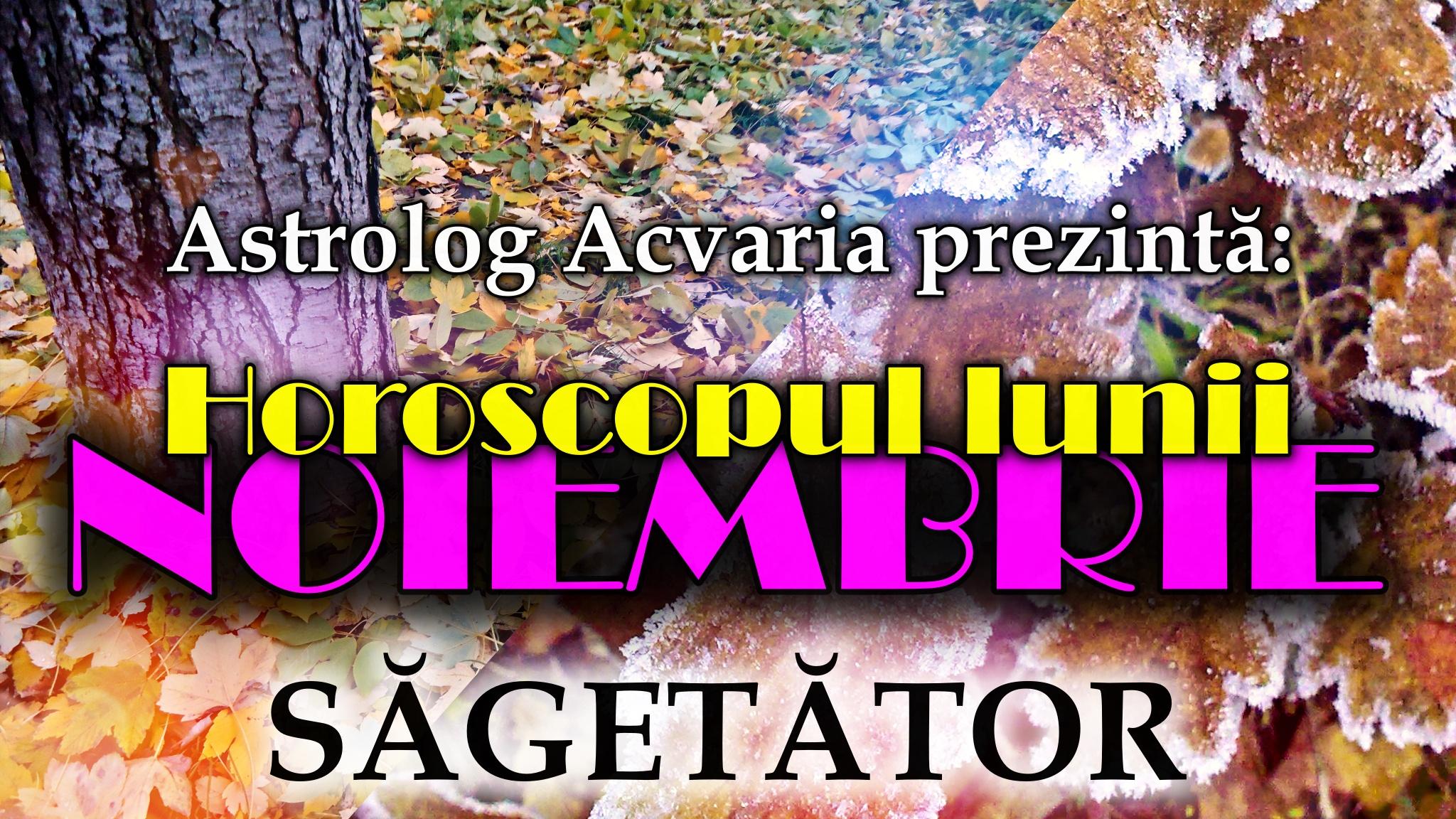 Horoscopul lunii NOIEMBRIE * Zodia SAGETATORULUI