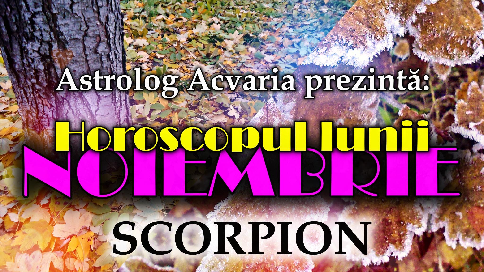 Horoscopul lunii NOIEMBRIE * Zodia SCORPIONULUI